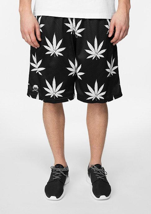 Cayler & Sons C&S Short Big Budz black/white