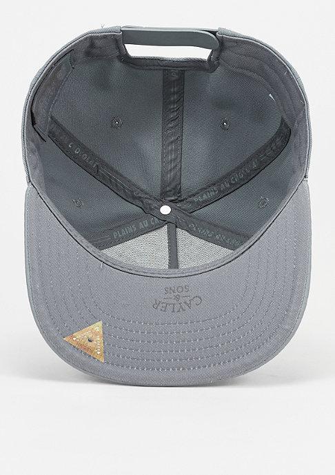Cayler & Sons Snapback-Cap 3D Logo Reptile grey