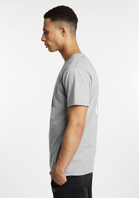 Cayler & Sons T-Shirt Wiz Knows grey heather/black/white