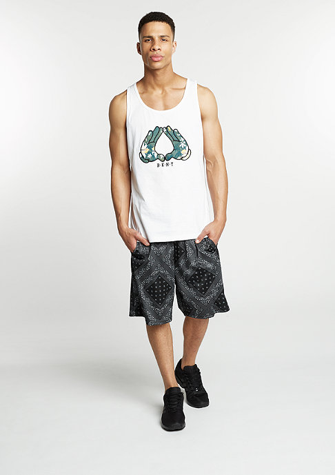 Cayler & Sons C&S BL Mesh Shorts Paiz black/white