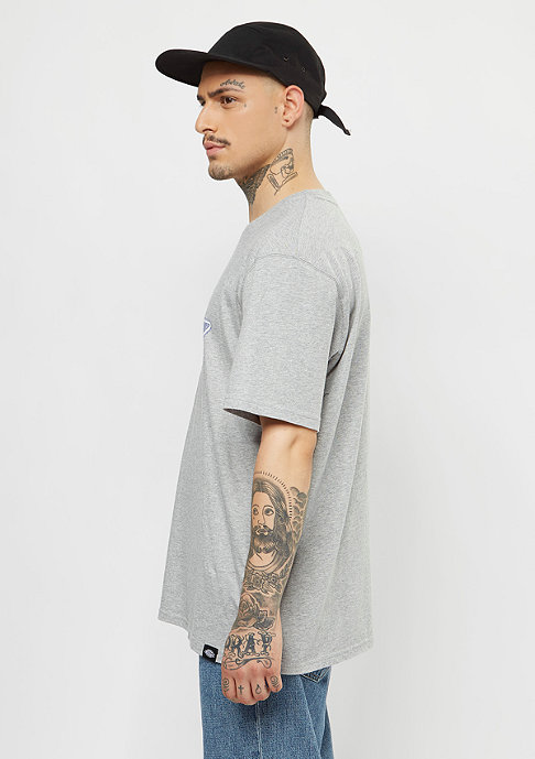 Dickies T-Shirt Wendel grey melange