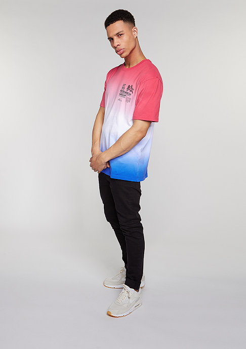 LRG T-Shirt Roots Rock Knit watermelon