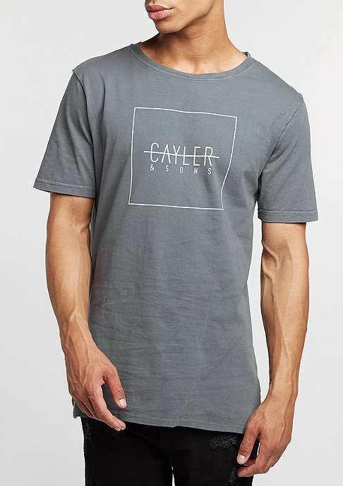 Cayler & Sons C&S BL Tee Box Fishtail washed grey/white