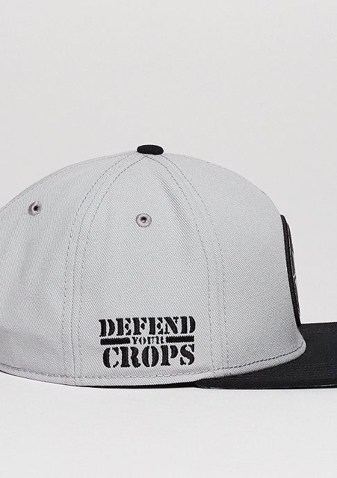 Cayler & Sons Snapback-Cap GL Defend Your Crops grey/black/green leaves