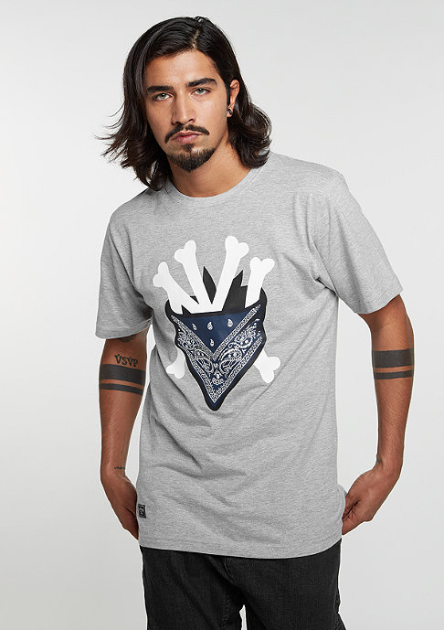 Cayler & Sons T-Shirt WL Grime grey heather/white/navy