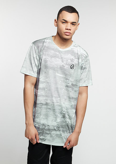 Criminal Damage T-Shirt East grey/multi