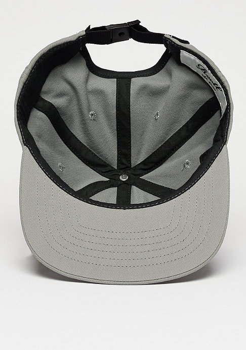 Reell Flat 6-Panel light grey