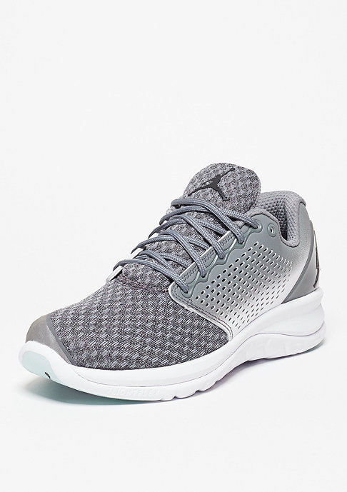 JORDAN Laufschuh Trainer 1 Winter cool grey/black/white