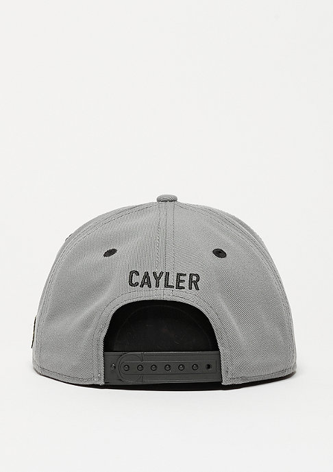Cayler & Sons C&S WL Cap Bigasso grey/mc/black
