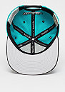 Team Arch HWC Vancouver Grizzlies teal