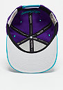 Team Arch NBA Charlotte Hornets blue/teal
