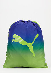 Turnbeutel Gym Bag surf the web/green gecko