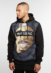 Hooded-Sweatshirt  WL Pacasso black/mc