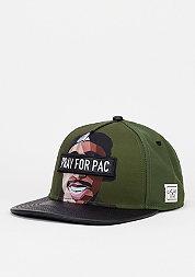 Snapback-Cap WL Pacasso forrest green/mc