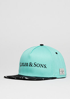 C&S CAP WL Rocks mint/black