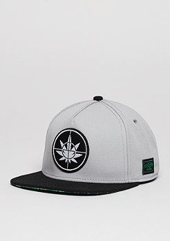 Snapback-Cap GL Defend Your Crops grey/black/green leaves
