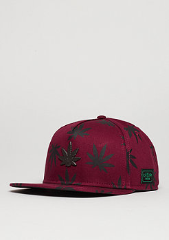 C&S CAP GL Best Budz maroon/black