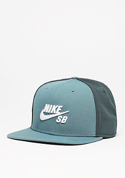 Snapback-Cap Icon hasta/seaweed/black