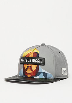 Snapback-Cap WL Bigasso grey/mc/black