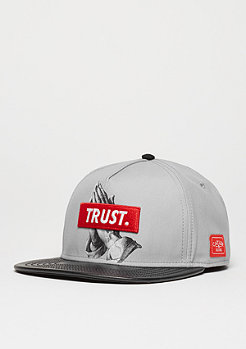 Snapback-Cap Trust grey