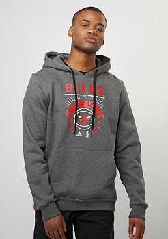Hooded-Sweatshirt WSHD Bulls dark grey