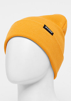 Dickies Alaska gold orange