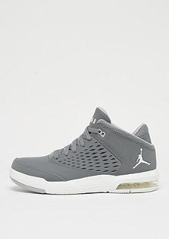 JORDAN Flight Origin 4 cool grey/summit white/wolf grey