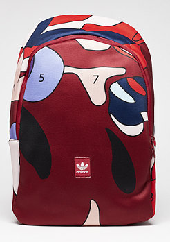 Essential AOP collegiate burgundy/multicolor