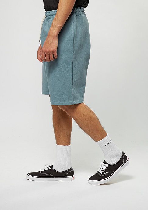 Reell Sport-Shorts province blue