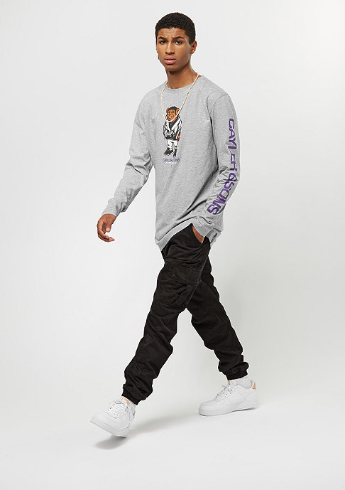 Cayler & Sons WL Purple Swag grey/heather