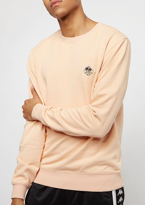 Cayler & Sons WL Vibin Crewneck acid washed peach/ice blue