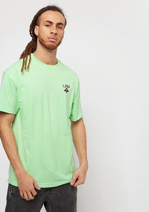 LRG Logo Plus mint