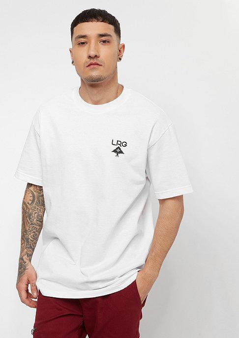 LRG Logo Plus white