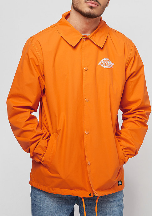 Dickies Summerfield energy orange