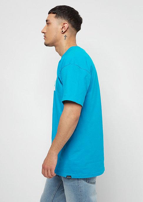 Etnies Corp Box turquoise