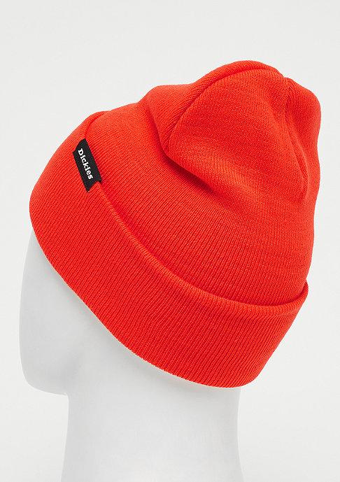 Dickies Alaska orange