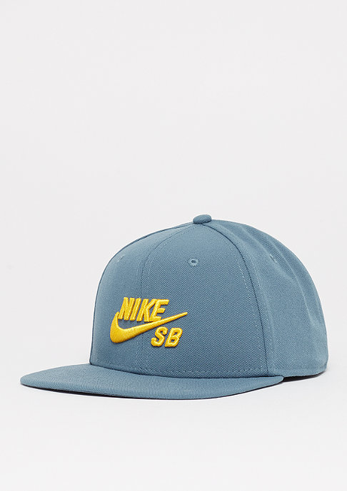 NIKE SB SB Icon Pro thunderstorm/yellow ochre