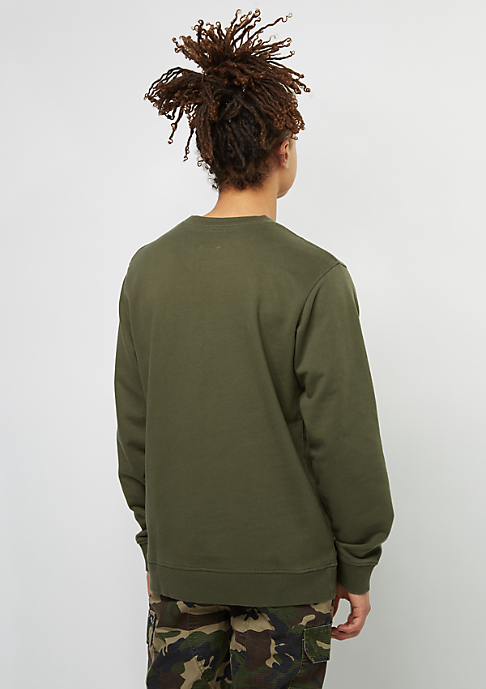 Dickies Sweatshirt HS dark olive