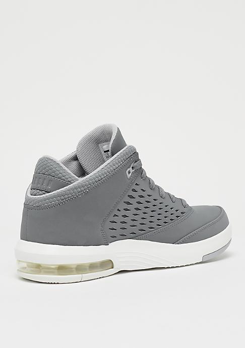 Jordan Flight Origin 4 cool grey/summit white/wolf grey