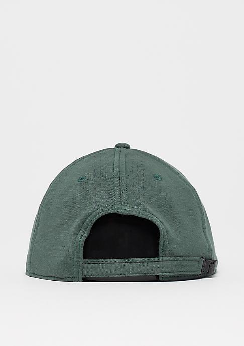 NIKE True SNL Hook vintage green/black