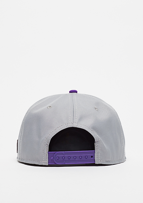 Cayler & Sons WL Styro grey/purple