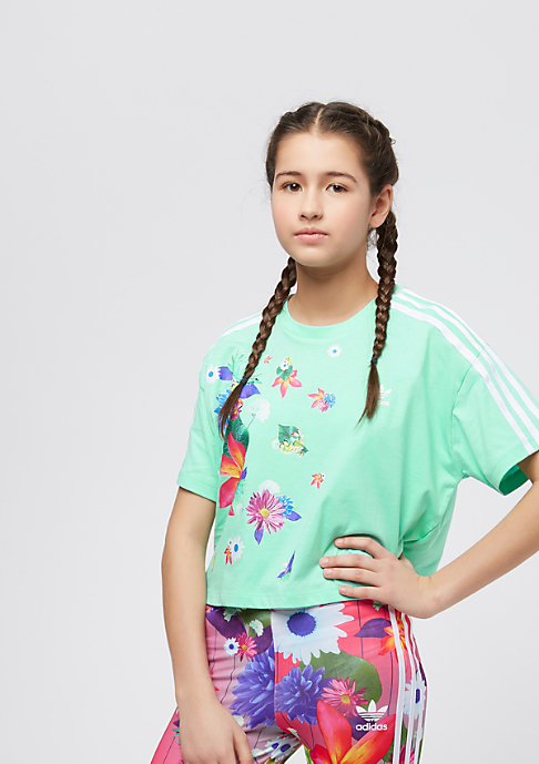 adidas Junior Graphic CPD easy green