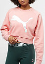 Cropped Crew Sweat coral cloud