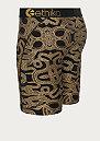 Gold Snake multicolor