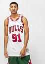 NBA Chicago Bulls Dennis Rodman Swingman white