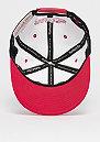 The White Crown Team Logo 110 NBA Chicago Bulls white/red