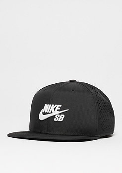 NIKE SB Performance black/black/black