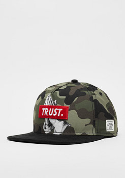 Cayler & Sons WL Cap Trust mc