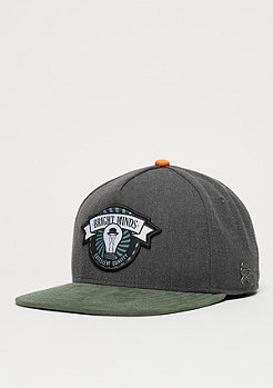 Cayler & Sons CL Cap Bright Minds dark grey