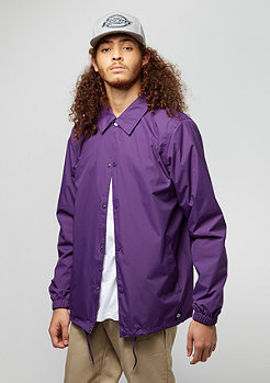 Dickies Torrance purple